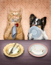 Cat and Dog table manners